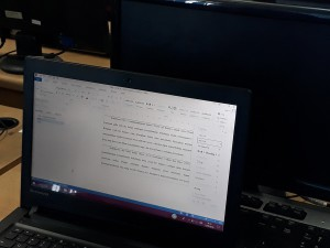 ms word 3